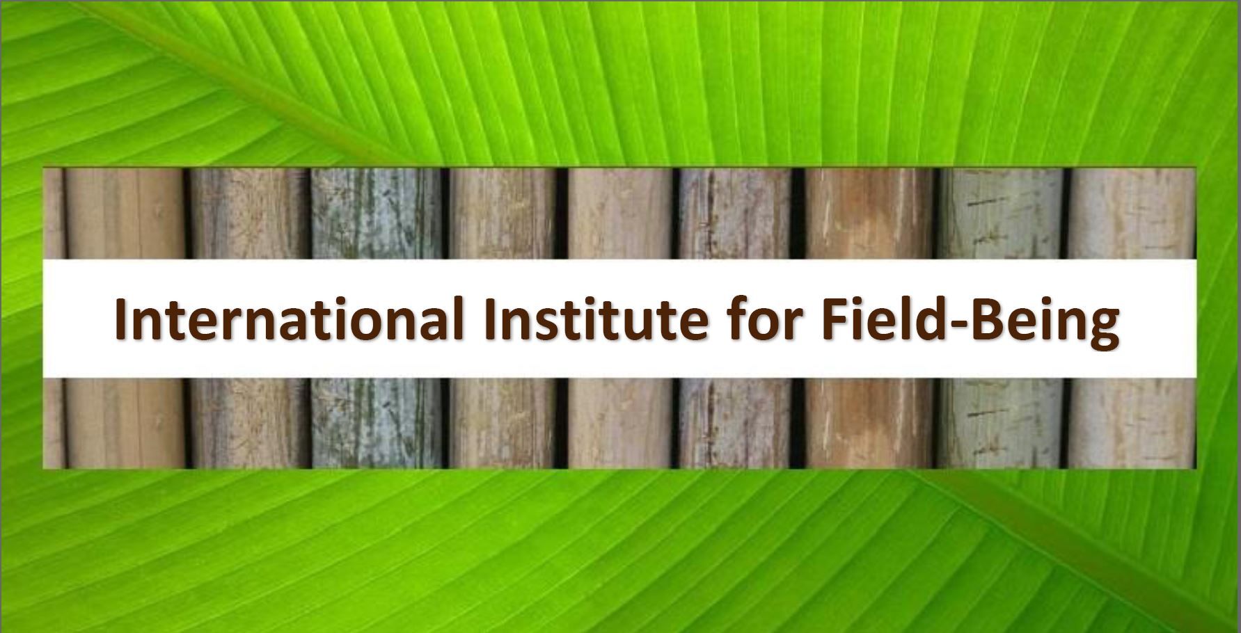 The International Institute for Field-Being